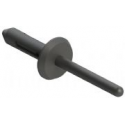 Nylon Blind Rivet - 73074