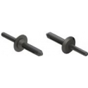 Nylon Blind Rivet - 74074